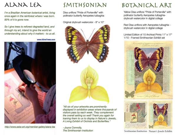 AlanaLea-BotanicalArt-no