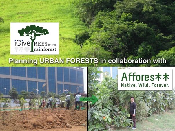 iGiveTrees-Afforestt-2017