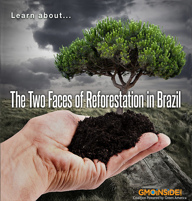 LearnAboutTwoFacesReforestation