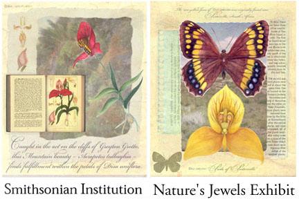 Nature's Jewels - Botanical Art