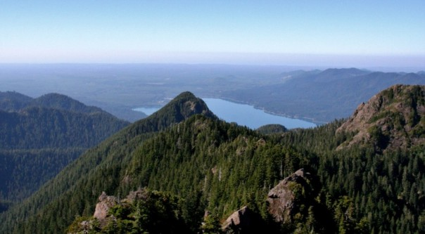 Electromagnetic Radiation coming to the Olympic Peninsula's Most Beautiful Areas